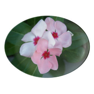 Blooming Beautiful Pink Impatiens Flowers Porcelain Serving Platter