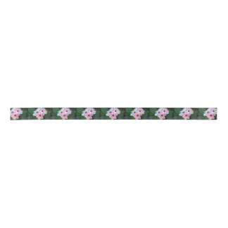 Blooming Beautiful Pink Impatiens Flowers Satin Ribbon