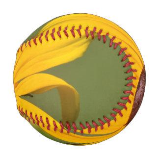 Blooming Black Eyed Susan Baseball