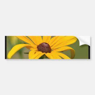 Blooming Black Eyed Susan Bumper Sticker
