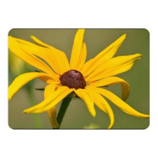 Blooming Black Eyed Susan Card
