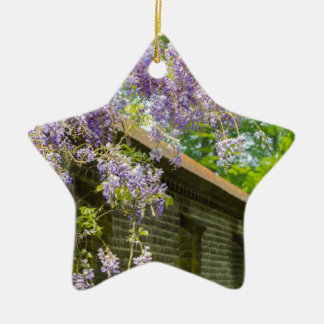 Blooming blue wisteria hanging over long brick wal ceramic ornament