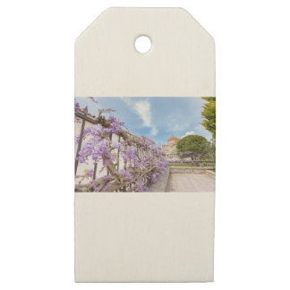 Blooming blue Wisteria sinensis on fence in Greece Wooden Gift Tags