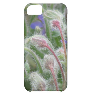 Blooming Borage iPhone 5C Covers
