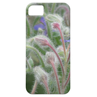 Blooming Borage iPhone 5 Cover