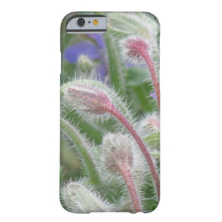 Blooming Borage Barely There iPhone 6 Case