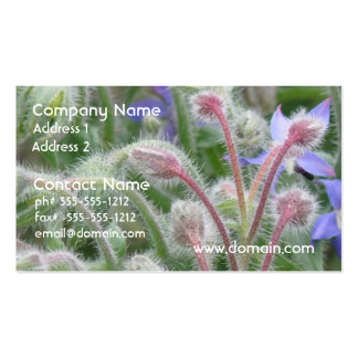 Blooming Borage Double-Sided Standard Business Cards (Pack Of 100)