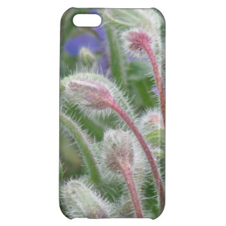 Blooming Borage Case For iPhone 5C