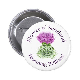 Blooming Brilliant Scottish Thistle Pinback Button