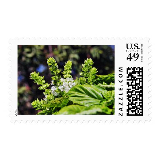 Blooming Bsail Postage Stamps