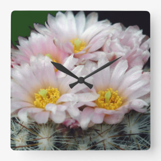 Blooming Cactus Acrylic Wall Clock