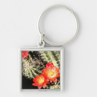 Blooming Cactus at Night Key Chains