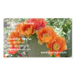 Blooming Cactus Business Card Templates