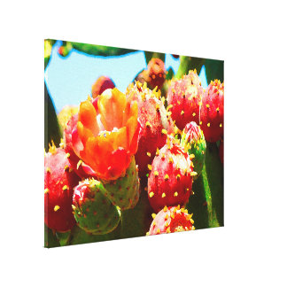 Blooming Cactus by Amy Vangsgard Gallery Wrapped Canvas