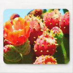 Blooming Cactus by Amy Vangsgard Mouse Pad