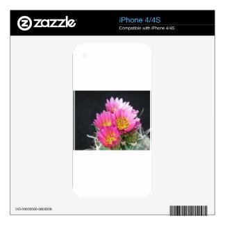Blooming Cactus iPhone 4 Skins