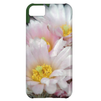 Blooming Cactus iPhone 5 case
