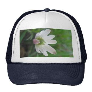 blooming cap trucker hat