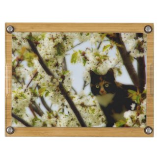 Blooming Cat Cheese Board