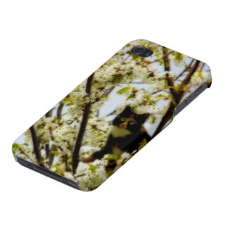 Blooming Cat Cover For iPhone 4