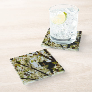 Blooming Cat Glass Coaster