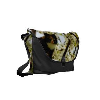 Blooming Cat Small Messenger Bag
