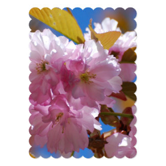 Blooming Cherry Blossoms 5x7 Paper Invitation Card