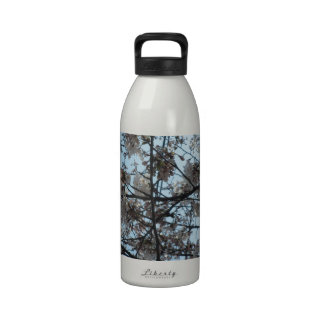 Blooming Cherry Blossoms Reusable Water Bottles
