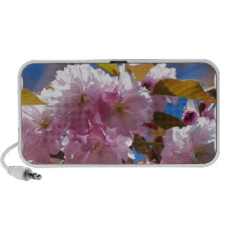 Blooming Cherry Blossoms iPod Speakers