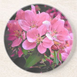Blooming Crabapple Drink Coaster
