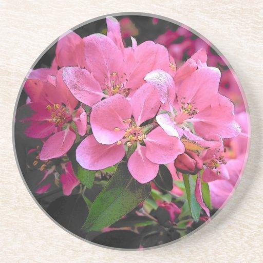 Blooming Crabapple Drink Coaster