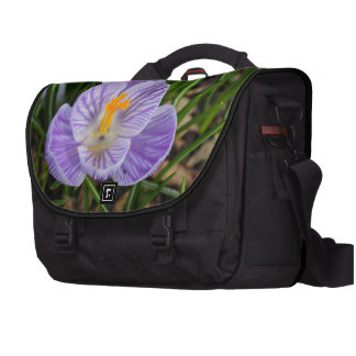 Blooming Crocus Laptop Bags