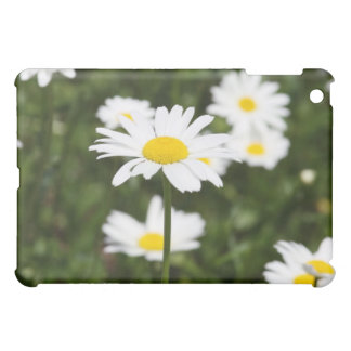 Blooming Daisies Cover For The iPad Mini
