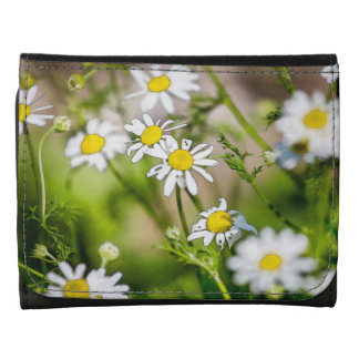 Blooming Daisies Floral Painterly Photograph Wallet
