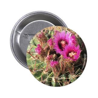 Blooming Devil's Tongue Barrel Cactus Button