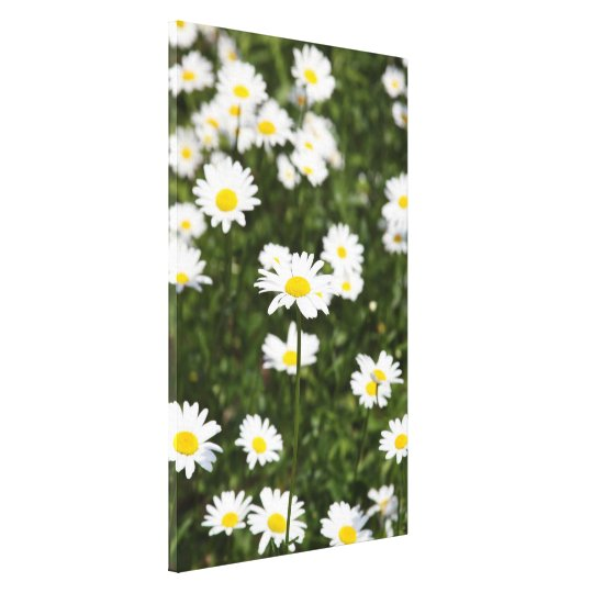 Blooming Flowers at Spring Canvas Print