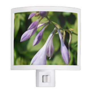 Blooming Hosta Nite Light