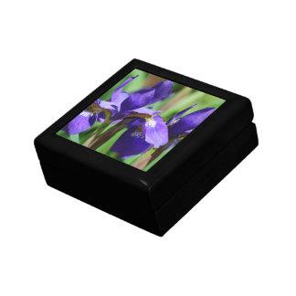 Blooming Iris Gift Box