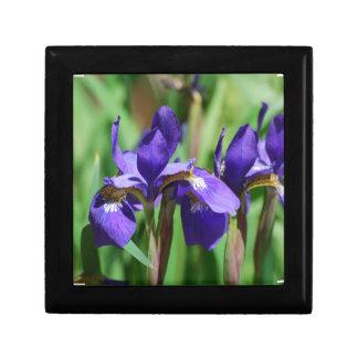Blooming Iris Gift Boxes