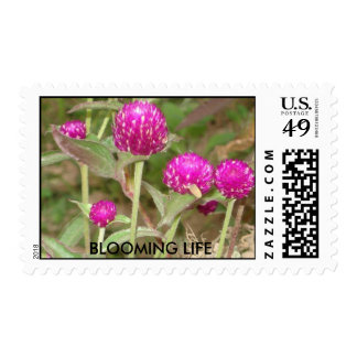 BLOOMING LIFE POSTAGE STAMP