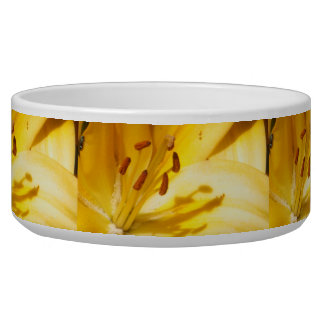 Blooming Lily Bowl