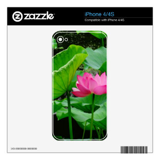 Blooming Lily Decal For The iPhone 4