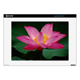 Blooming Lily Laptop Decals