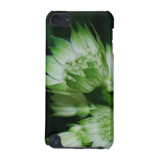 Blooming Masterwort iTouch Case iPod Touch (5th Generation) Cases