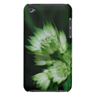 Blooming Masterwort iTouch Case Barely There iPod Case