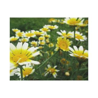 Blooming Meadow Canvas Print