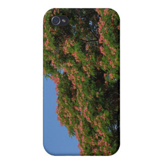 Blooming Mimosa Tree iPhone case