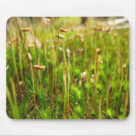 Blooming Moss Mouse Pads