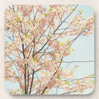 Blooming Nature Coaster