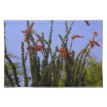 Blooming Ocotillo Placemat